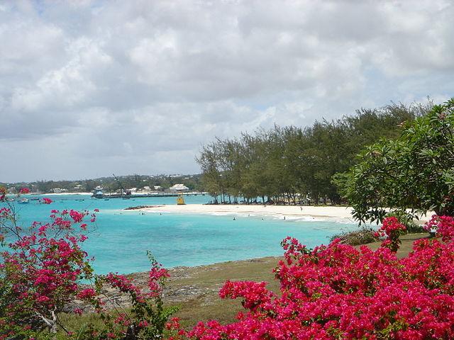 Barbados _8