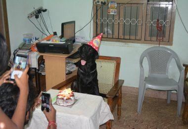 Tom_ Birthday Party Hotel