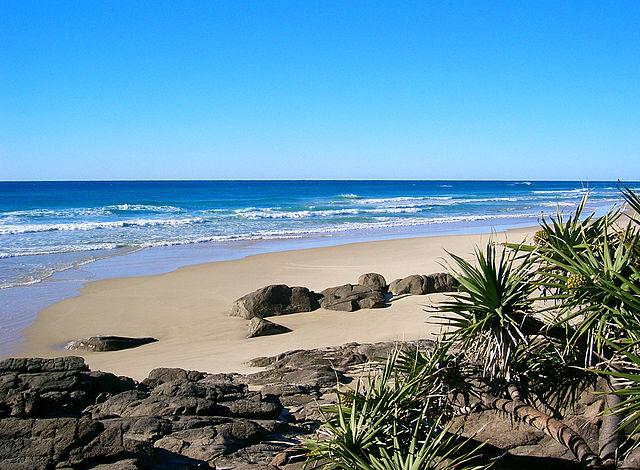 Fraser Island _5