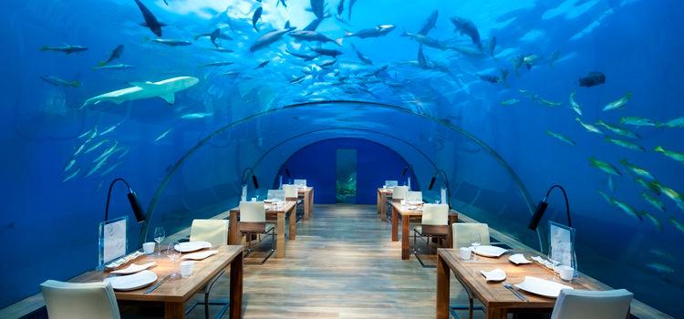 Ithaa, Underwater Restaurant