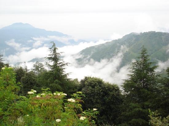 Himachal Pradesh _24