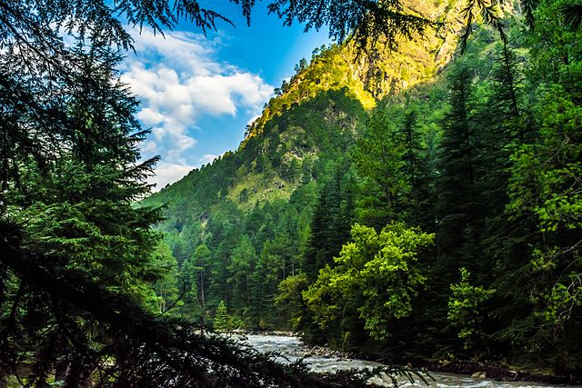 Himachal Pradesh _11