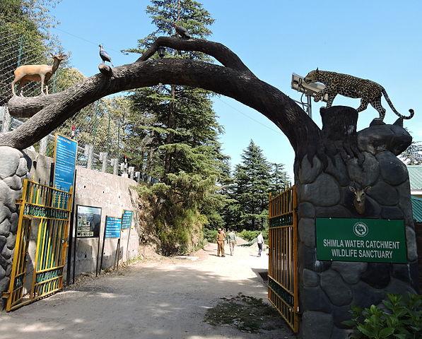 Himachal Pradesh _19