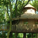 3 Secluded Treehouse Lodges in Scotland