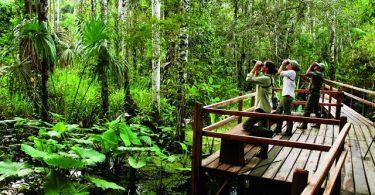 Inkaterra Reserva Amazonica, Puerto Maldonado