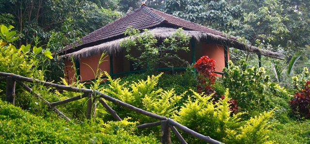 Hornbill river resort, Dandeli