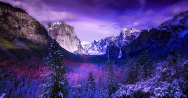 Yosemite National Parks