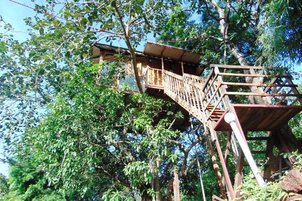 Nisarga Sahavas tree houses, Ratnagiri