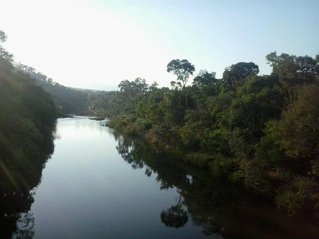 River Bhadra