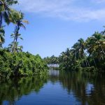 10 Best Backwater Stretches in Kerala