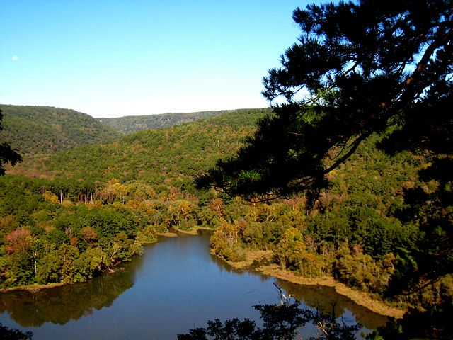 Camping Sites at Ozark National Forest