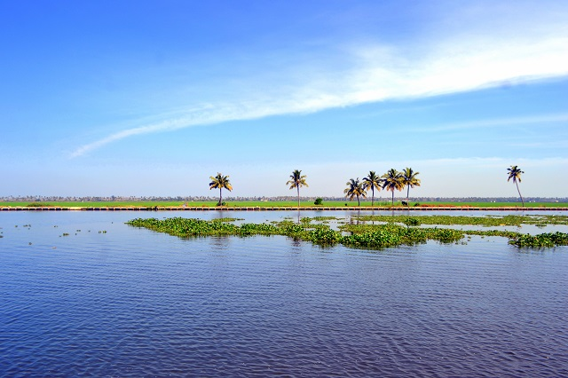 Kuttanad Backwater