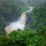5 Waterfalls near Mumbai