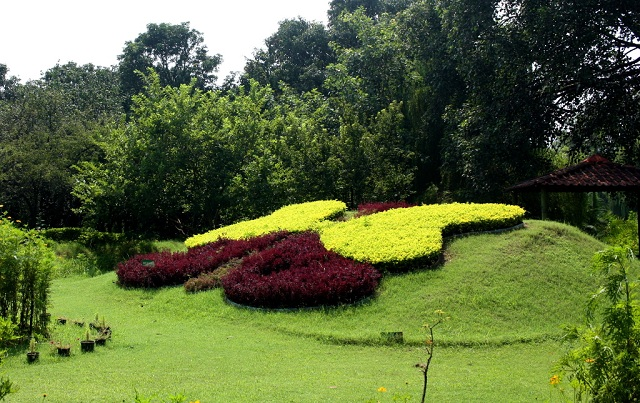 Butterfly Parks in India Chandigarh.
