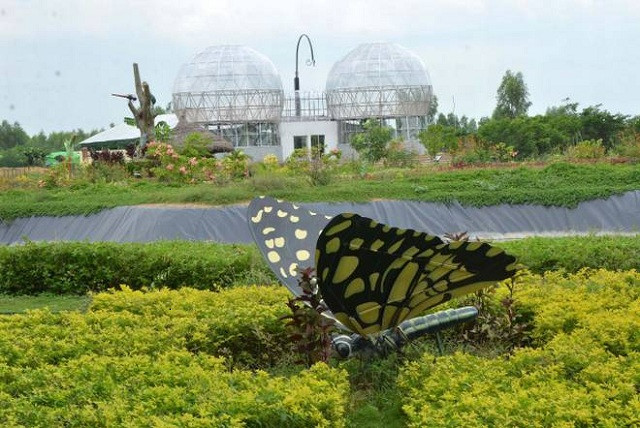 Butterfly Parks in India Srirangam