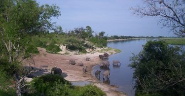 National Park in Africa