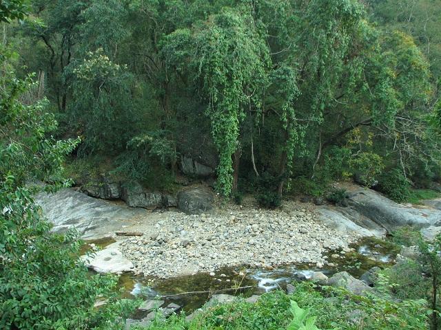 Keeriparai Reserve Forest, Thiruparappu Waterfalls