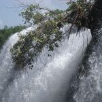 View Traveling Guide to Thiruparappu Waterfalls and Poovar Island