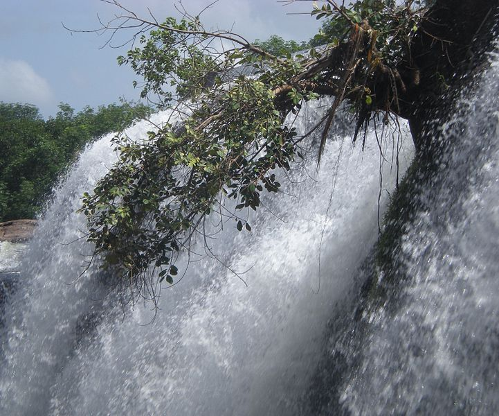 Thiruparappu Waterfalls