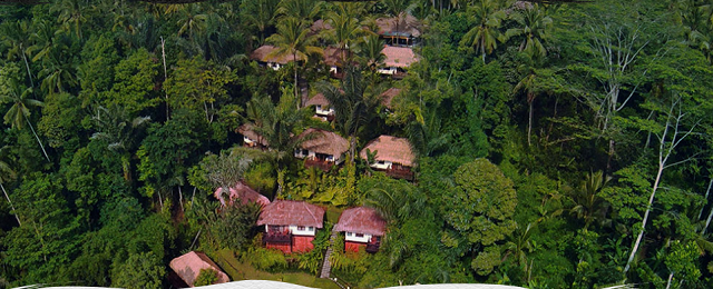 Scenic Nandini Jungle Resort and Spa