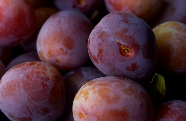 Norwegian Plums