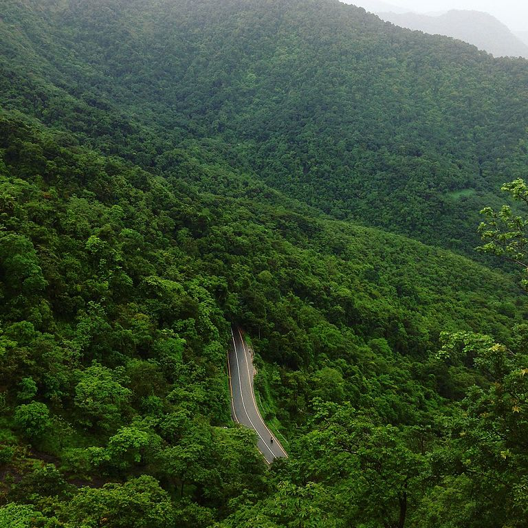 8 Beautiful Wayanad Tourist Attractions