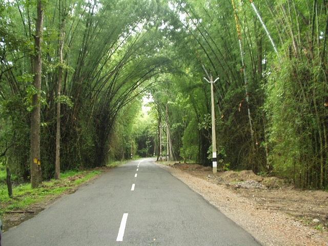 Wayanad Tourist Attractions