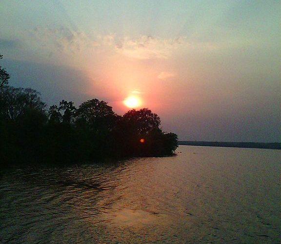Wildlife Sanctuaries within 100 Km Each in Nagpur