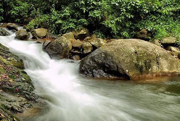 Wayanad Tourist Attractions waterfalls