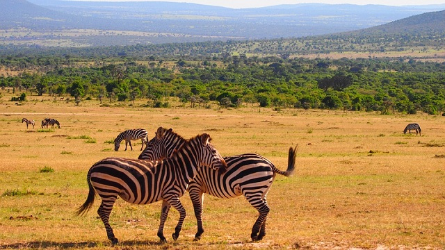 Beautiful and Scenic Countries Kenya