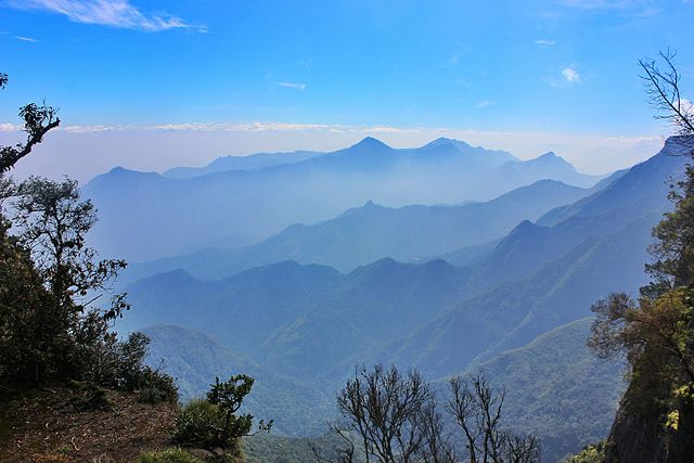 20 Beautiful and Important Attractions to See in Kodaikanal