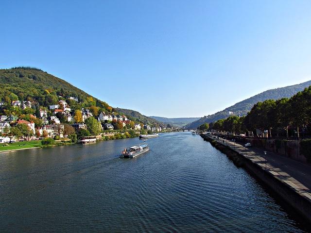 Rhine scenic river cruises