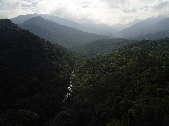 Things to Do in Brazil Itatiaia National Park