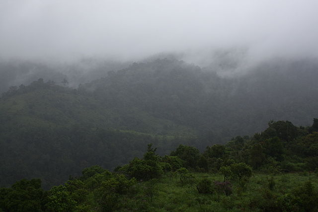 Silent Valley, Kerala