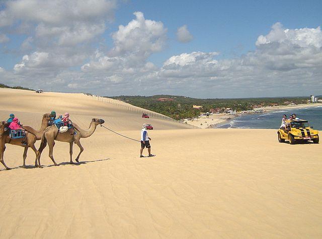 Things to Do in Brazil Dunas de Genipabu