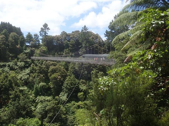 Arapuni Suspended bridge