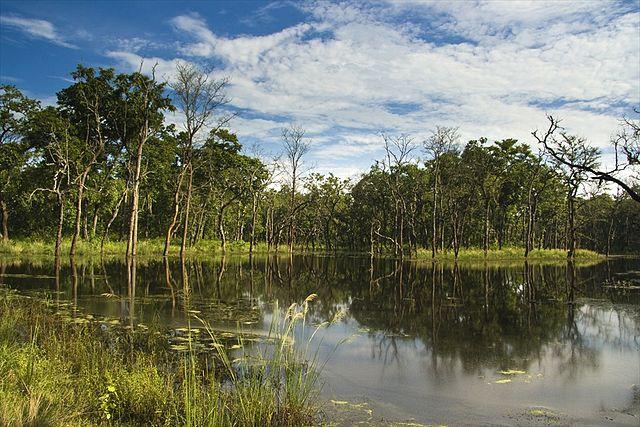 Chitwan National Park Bishazari Tal