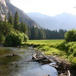 What to See in the Kings Canyon National Park, California?