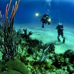 15 Most Ideal Scuba Diving Places in the World