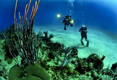 Scuba Diving Places
