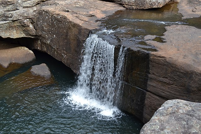 Unique things to do in sydney Dharawal National park