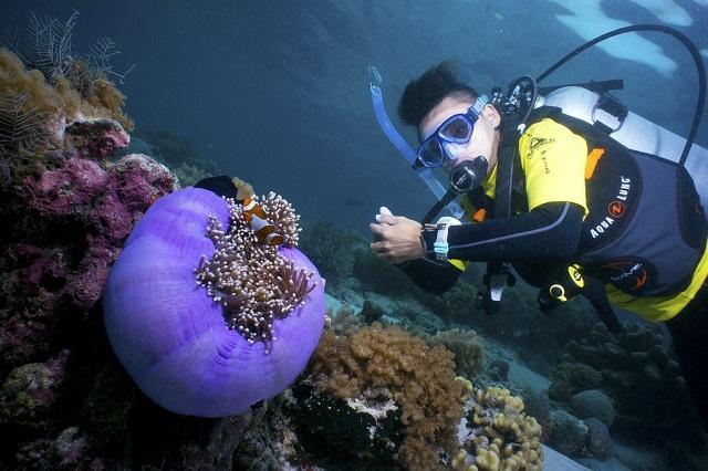 Sipadan Island Malaysia, Best Scuba Diving in the World