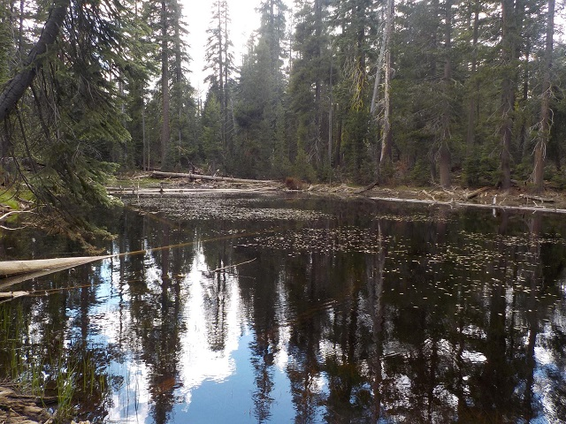 Lake Mead National Recreation Area, Nevada- El Dorado National Forest