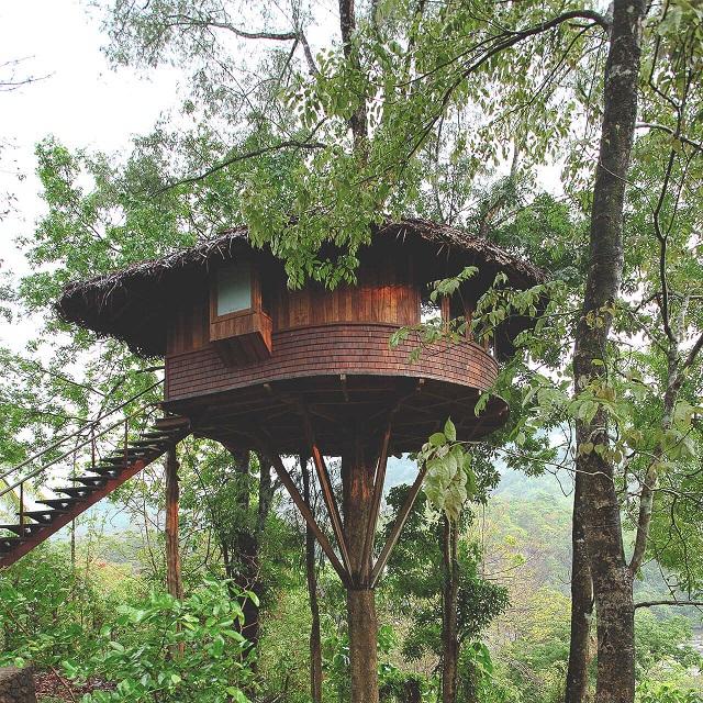 Athirapalli Rainforest tree house