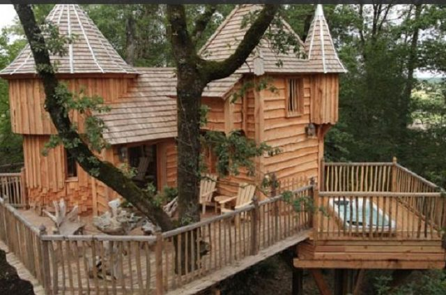 Chateau tree house-France