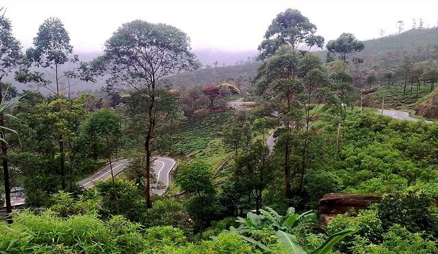 Nuwara Eliya, Sri Lanka, Affordable Tropical Vacation Destinations