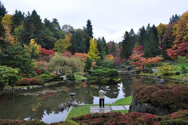 Japanese garden in Seattle