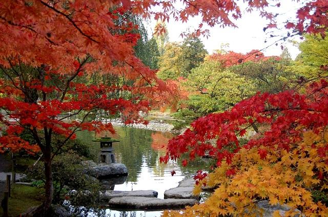 Breathtaking Fall Vacation Spots in USA Seattle