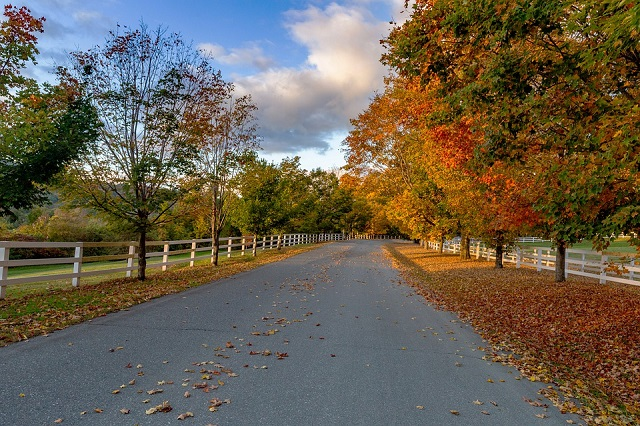 Fall Vacation Spots in USA Woodstock