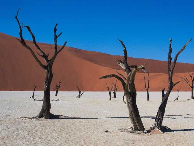 Ultimate Once in a Lifetime Vacation Spots namibia